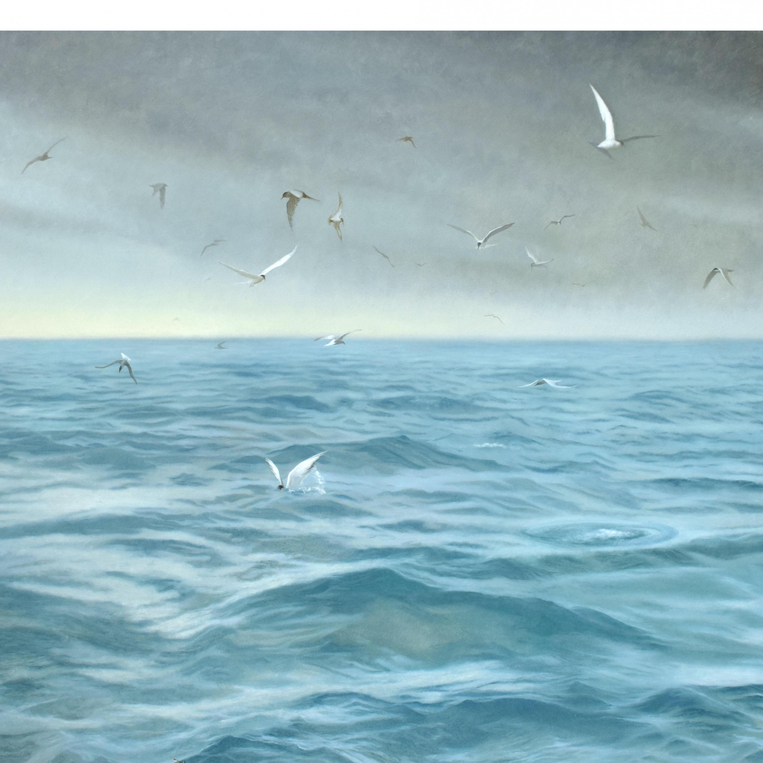 Baumgarten, Seascape with Terns, 42 x 60 inches, oil on panel